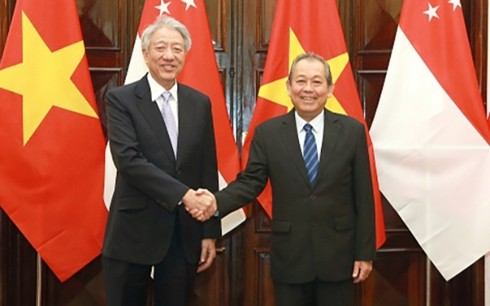Deputi Harian PM Vietnam, Truong Hoa Binh melakukan pembicaraan dengan Deputi PM, Menteri Koordinator Keamanan Nasional Singapura, Xiao Zhixian - ảnh 1