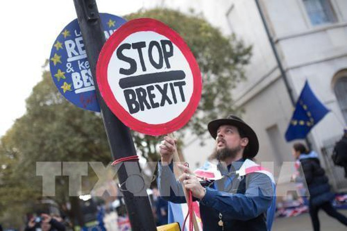Pawai memprotes Brexit yang paling besar selama banyak dekade di London - ảnh 1