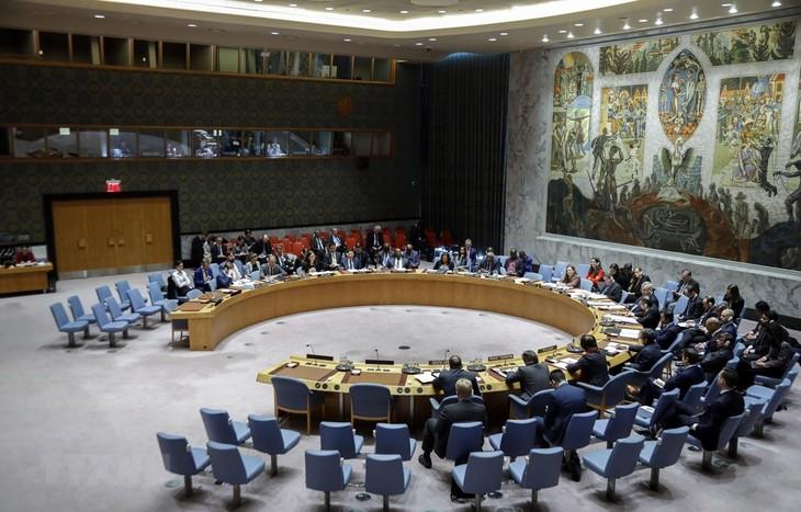 PBB membebaskan sanksi terhadap aktivitas bantuan perikemanusiaan di RDRK - ảnh 1