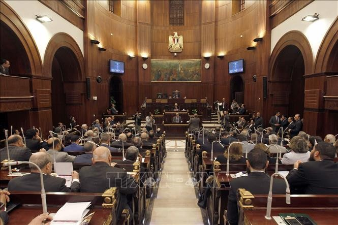 Mesir memperkuat keamanan menjelang referendum - ảnh 1