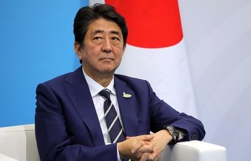 PM Jepang melakukan perlawatan ke Eropa dan Amerika Utara untuk mempersiapkan pertemuan puncak G20 - ảnh 1