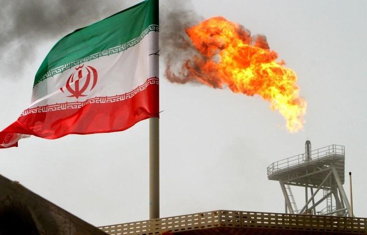 Banyak negara memprotes perihal AS menghentikan status membebaskan pembelian minyak Iran - ảnh 1