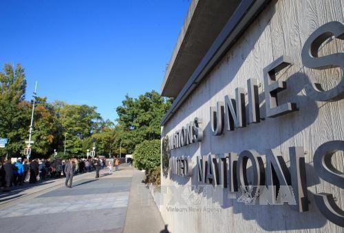 PBB memilih Hari Internasional Multilateral dan Diplomasi Demi Perdamaian - ảnh 1