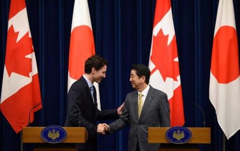 "Jepang dan Kanada menegaskan CPTPP ""memberikan kepentingan yang besar"" - ảnh 1"