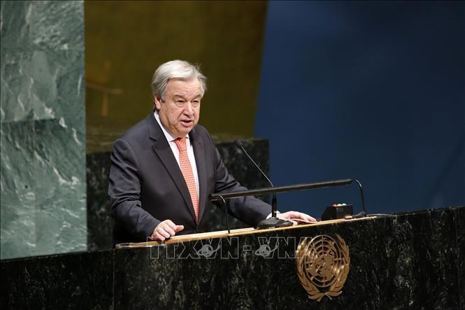 PBB mengenangkan orang-orang yang telah gugur demi usaha menjaga perdamaian - ảnh 1