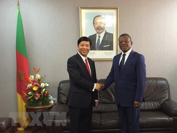 Utusan Khusus PM Pemerintah, Deputi Menlu Nguyen Quoc Cuong melakukan kunjungan kerja di Republik Kamerun  - ảnh 1