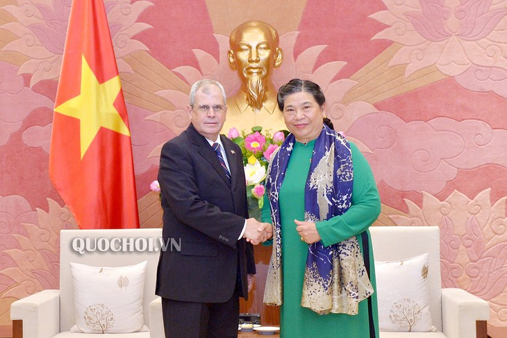 Wakil Harian Ketua Tetap Majelis Nasional Vietnam, Tong Thi Phong menerima Delegasi Parlemen Kuba - ảnh 1