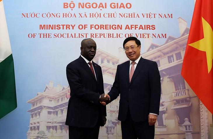 Vietnam menghargai pengembangan hubungan persahabatan dan kerjasama dengan Pantai Gading - ảnh 1