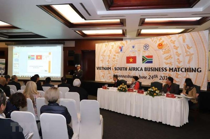 Badan-badan usaha Vietnam mengusahakan peluang melakukan ekspor ke Afrika Selatan - ảnh 1