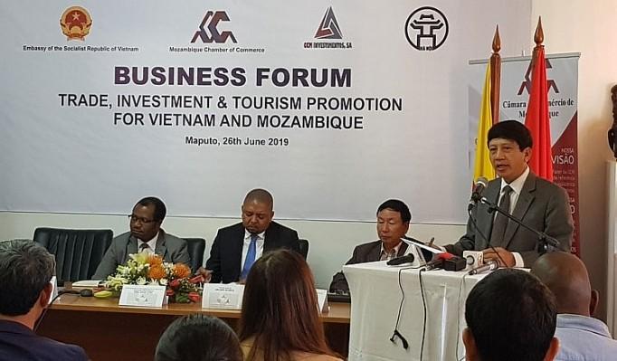 Vietnam - Mozambik mempromosikan kerjasama investasi, perdagangan dan pariwisata - ảnh 1