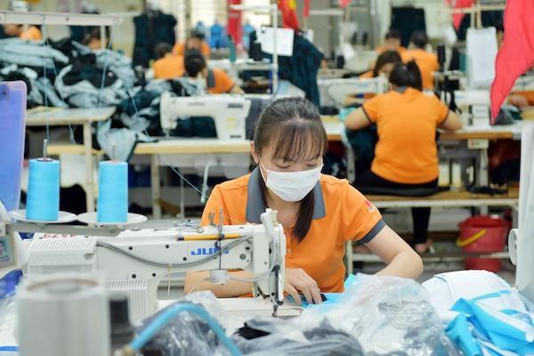 Peluang Vietnam dari Perjanjian EVFTA - ảnh 1