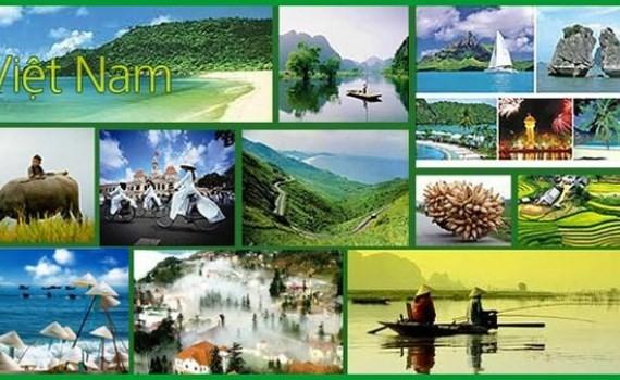 Badan usaha mencari solusi untuk mengembangkan pariwisata yang berkelanjutan - ảnh 1