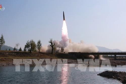 Pejabat Republik Korea dan Jepang menegaskan RDRK meluncurkan rudal - ảnh 1