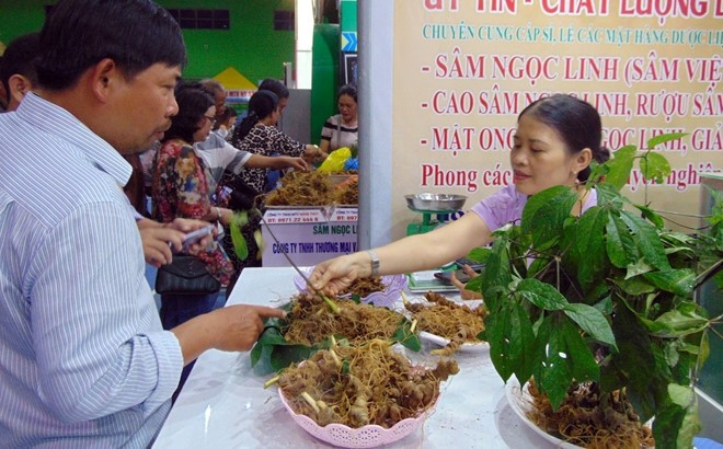 Pembukaan Pesta Ginseng Ngoc Linh ke-3 tahun 2019 - ảnh 1
