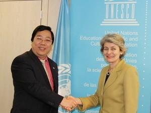 Vietnam begrüßt Unesco-Initiative zur Bildung einer Notstiftung  - ảnh 1