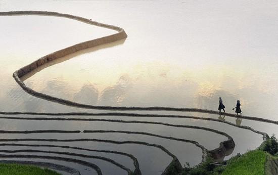 """Die Ausstellung """"Das schöne Vietnam"""" - ảnh 5"""