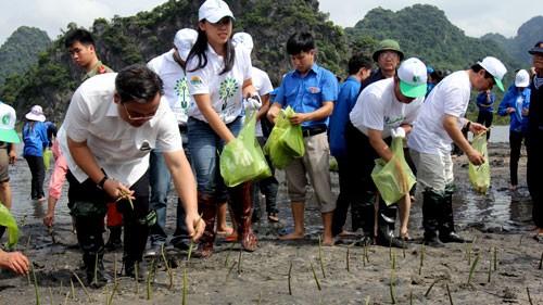 Aktionen zum internationalen Umwelttag - ảnh 1