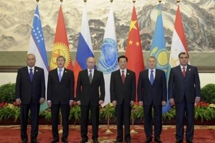 SCO will die Zusammenarbeit innerhalb der Organisation verstärken - ảnh 1