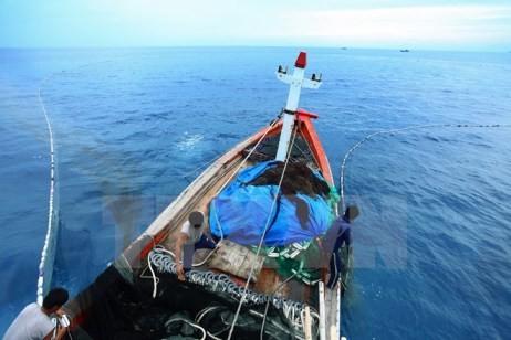 Das Gesetz für Bodenschätze, Meersumwelt und Inseln soll einen gesetzlichen Korridor schaffen - ảnh 1
