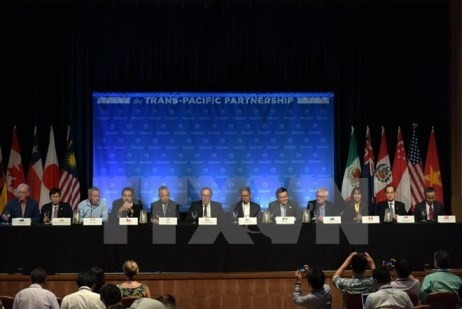 Beginn der neuen TPP-Verhandlungsrunde in den USA - ảnh 1