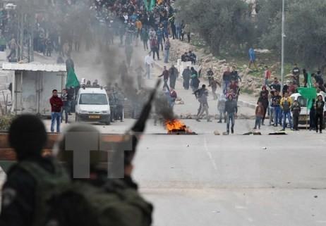 Weitere Auseinandersetzungen zwischen Palästinensern und israelischen Polizisten - ảnh 1