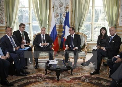 """""""Normandie-Quartett"""" ruft die Umsetzung der Minsker-Vereinbarung über Ukraine auf - ảnh 1"""