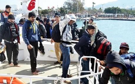 Türkei arbeitet mit Deutschland bei der Flüchtlingsfrage zusammen - ảnh 1