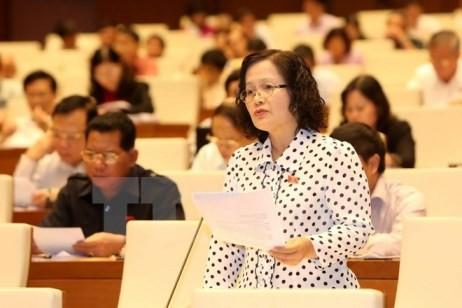 Abgeordneten diskutieren die umstrittenen Bestimmungen des Entwurfs des geänderten Zivilgesetzbuchs - ảnh 1