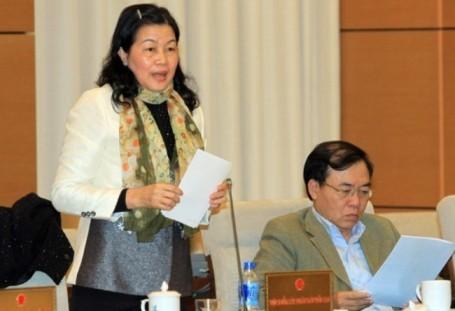 Abgeordnete diskutieren den geänderten Entwurf der Zivilprozessordnung - ảnh 1
