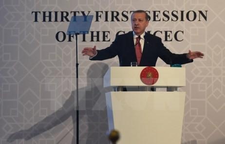 Die Türkei: Handelssanktionen Russlands werden die russischen Bauern beeinträchtigen - ảnh 1