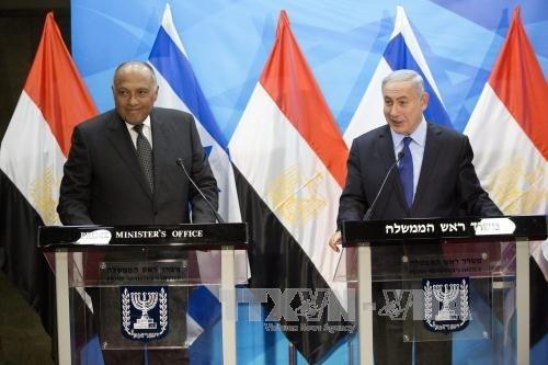 Ägypten bemüht sich um die Friedensverhandlungen im Nahen Osten - ảnh 1