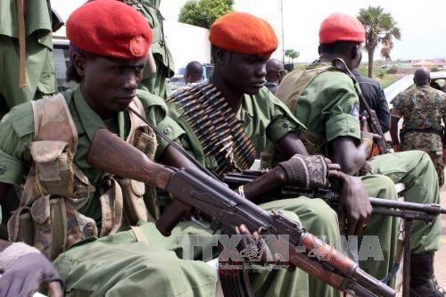 Weltsicherheitsrat ruft die Nachbarländer Südsudans auf, sich für den Stopp der Gefechte in Juba - ảnh 1