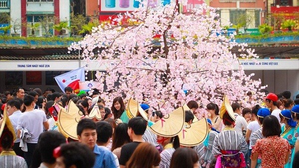 Das Fest für Kulturaustausch zwischen Vietnam und Japan 2016 - ảnh 1