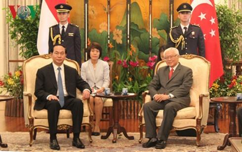 Die strategische Partnerschaft zwischen Singapur und Vietnam auf ein neues Niveau bringen - ảnh 1