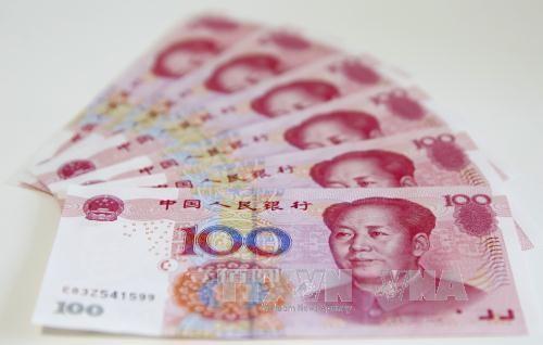 IWF macht Yuan zur Weltwährung - ảnh 1