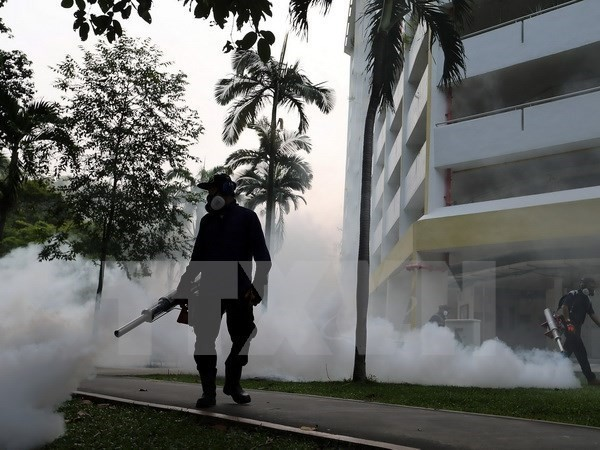 Warnung vor Verbreitung von Zika-Virus in Asien-Pazifik - ảnh 1