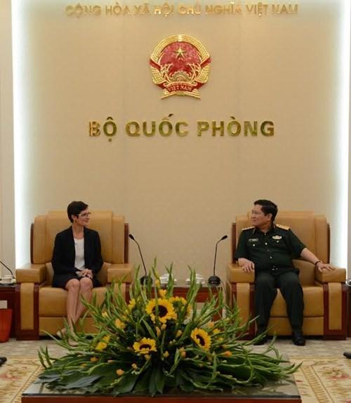 Vietnam und die USA führen 7. Dialog über Verteidigungspolitik - ảnh 1