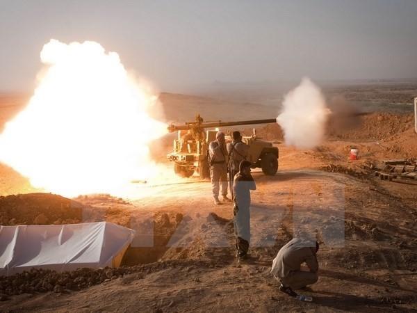 Westliche Länder tagen über den Kampf gegen den IS - ảnh 1