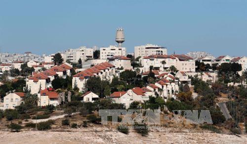 Israel erweitert Siedlungen im Westjordanland - ảnh 1