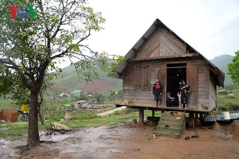 Rückkehr in die vom Taifun besuchte Gemeinde Yang Mao - ảnh 1