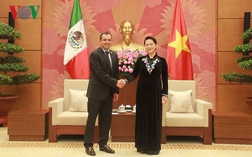 Vietnam und Mexiko verstärken die Wirtschafts- und Handelsbeziehungen - ảnh 1
