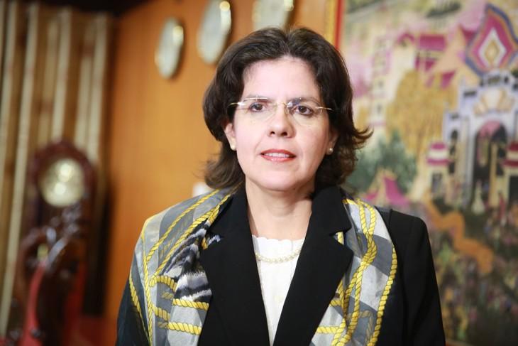 KPV-Generalsekretär Nguyen Phu Trong empfängt Kubas Botschafterin - ảnh 1