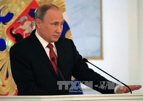 Russlands Präsident bekräftigt, keine Verfassungsänderung anzustreben - ảnh 1