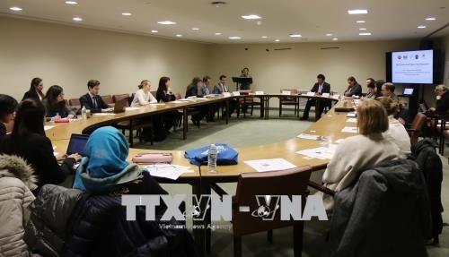 Vietnam und Fidschi leiten die Präsentation der Freundesgruppe gegen Ertrinken bei der UNO - ảnh 1