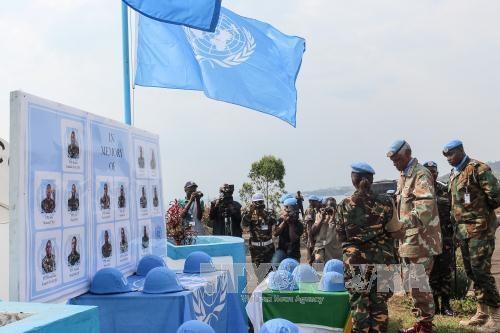 Vietnam ruft zur Reform der UN-Friedenskommission auf - ảnh 1