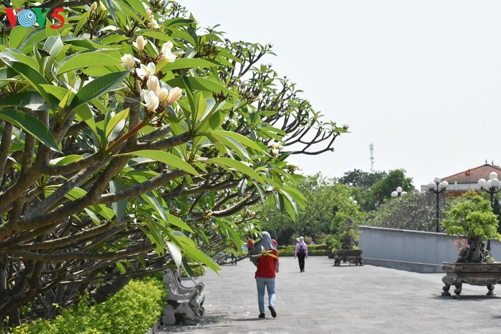 Besuche an den historischen Orten in Truong Son - ảnh 11