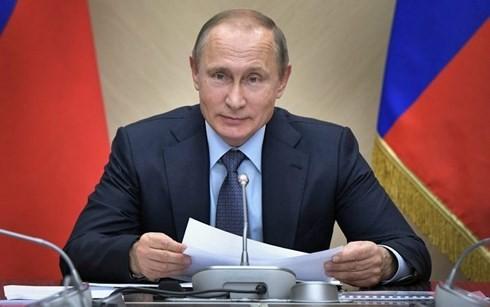Russlands Präsident Wladimir Putin wird einen Online-Dialog mit seinen Bürgern am 7. Juni haben - ảnh 1
