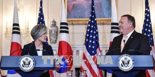 Südkorea und die USA wollen die Zusammenarbeit in der Nordkorea-Frage aufrechterhalten - ảnh 1