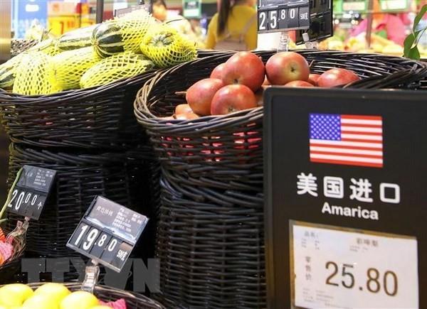 Die USA wollen eine Handelsallianz gegen China bilden - ảnh 1