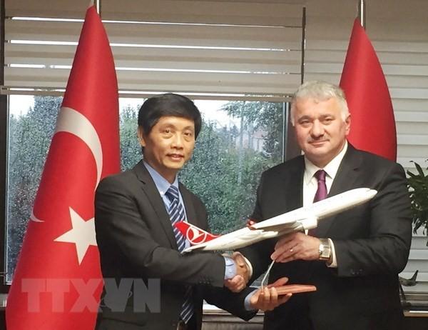 Investitionen der türkischen Unternehmen in Vietnam anzulocken - ảnh 1